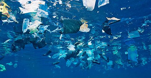 marine+plastic